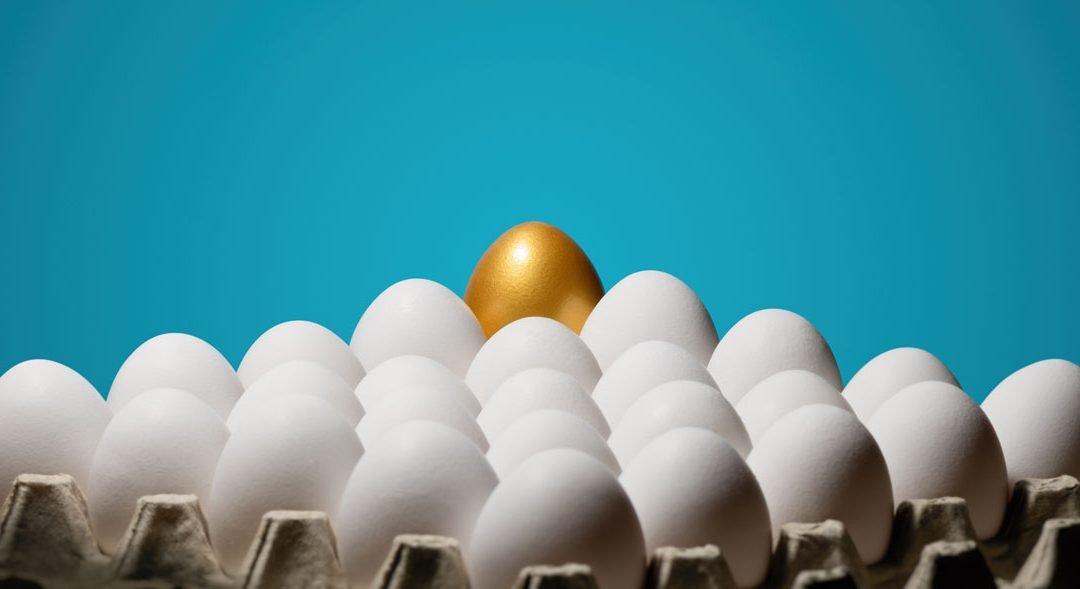 USDA Bids for Eggs (Nov 15, 2019)