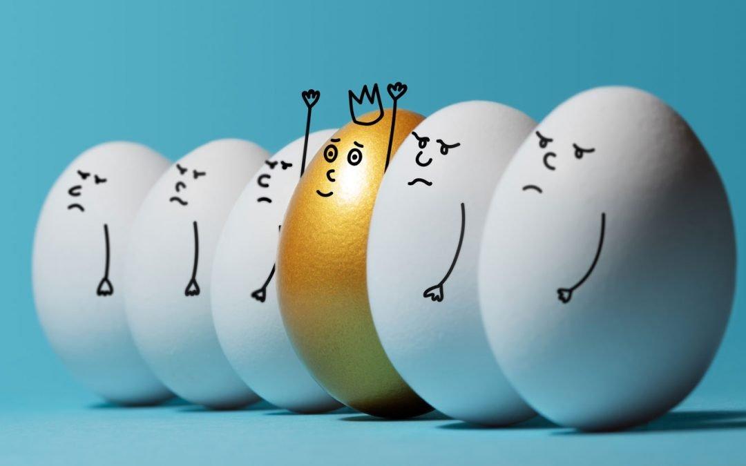 USDA Bids for Eggs