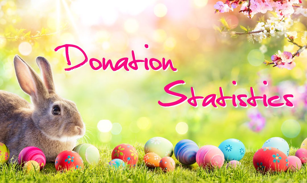How Many Eggs Do You Donate Annually?